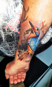 Colour realistic kingfisher tattoo